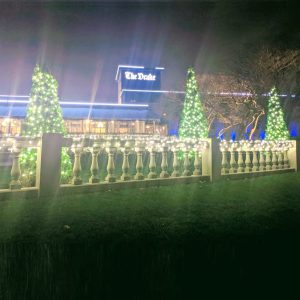 Holiday Light at The Drake - Oak Brook (Oak Brook Artisan Market)